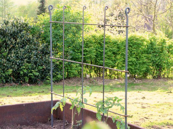 Wandrankgitter aus Eisen roh für Kletterpflanzen, Frucht- oder Obststräucher